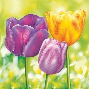 Servilletas para decoupage Three Garden Tulips 33 X 33 cm.