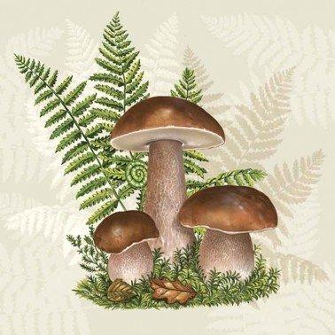Servilletas para decoupage Boletus with Leaves of Fern 33 X 33 cm.