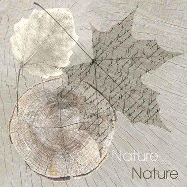 Servilletas para decoupage Sentimental Nature 33 X 33 cm.