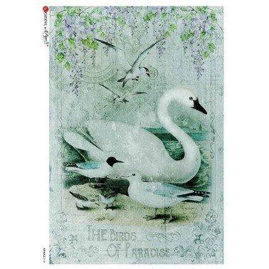 Papel de arroz para decoupage A4 Paper Designs Animales 0126.
