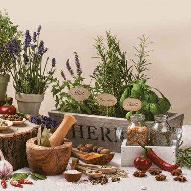 Servilletas para decoupage Aromatic Herbs 33 X 33 cm.