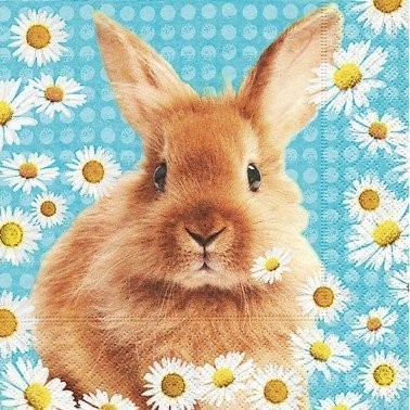 Servilletas para decoupage Daisy Rabbit 33 X 33 cm.