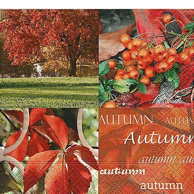 Servilletas para decoupage Autumn nature 33 X 33 cm.